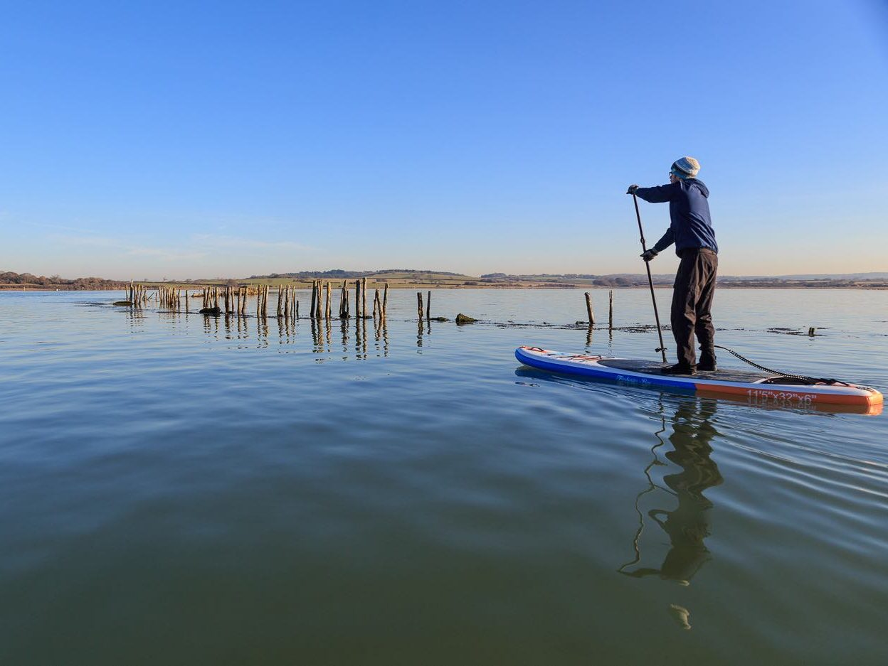 SUP freshwater bay paddle stand up Newtown nature